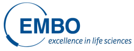 Image of (446312) EMBO: Short & Long-Term Fellowships