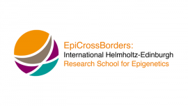 Image of (683795) PhD positions ininternational programme on epigenetics research, in Germany and the UK - EpiCrossBorders