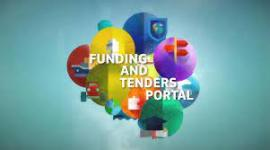 Image of (639430) Come to Webinar session: The Funding & tenders Portal for beginners (27 May 2021)
